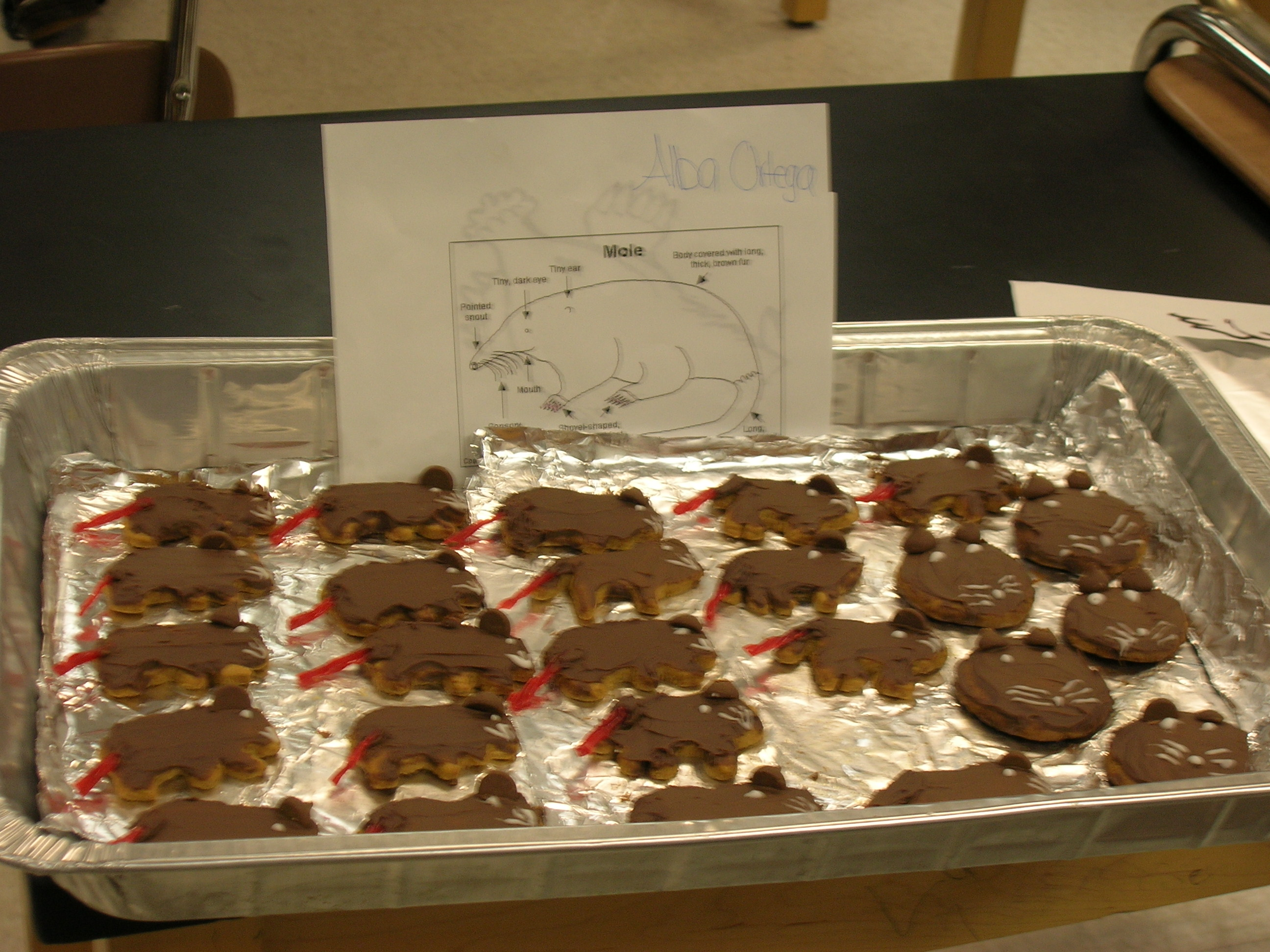 Ideas For Mole Day Food